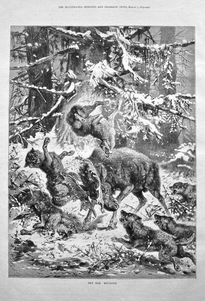 The Elk Militant. 1879.