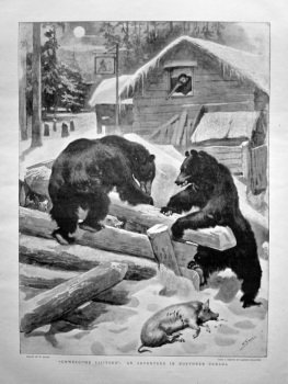 """Unwelcome Visitors"" : An Adventure in Northern Canada. 1898."