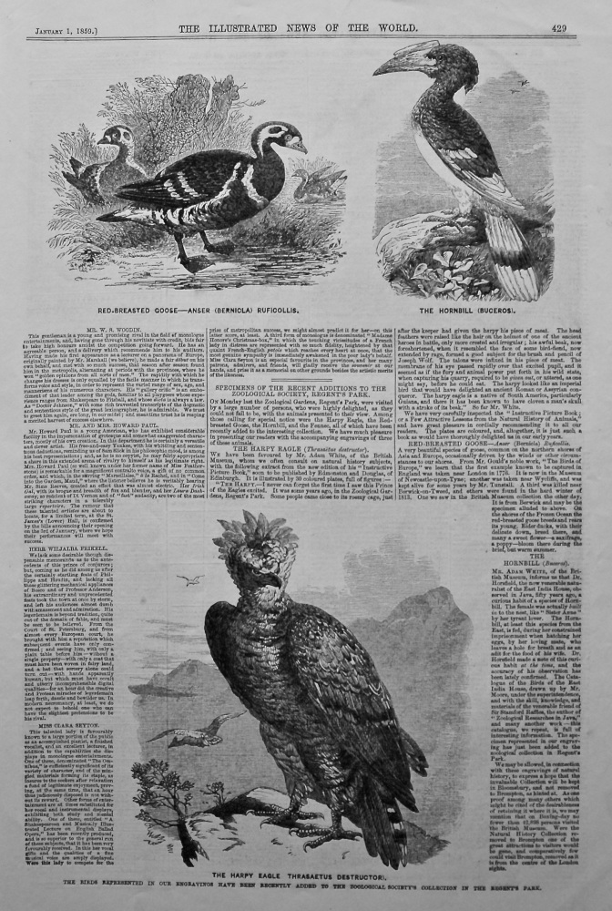 Specimen's of the Recent Additions to the Zoological Society, Regent's Park. 1858.