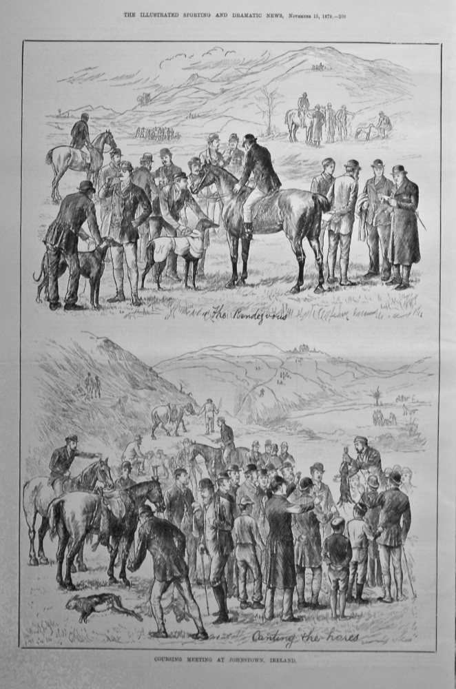 Coursing Meeting at Johnstown, Ireland.  1879.