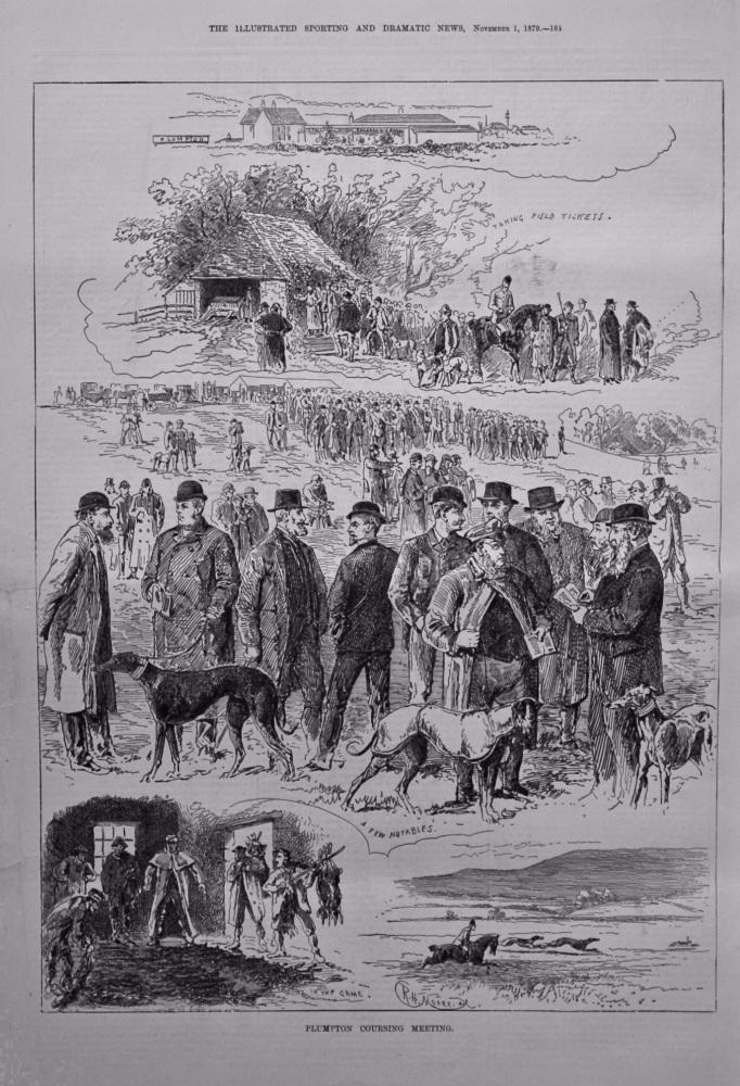 Plumpton Coursing Meeting. 1879.