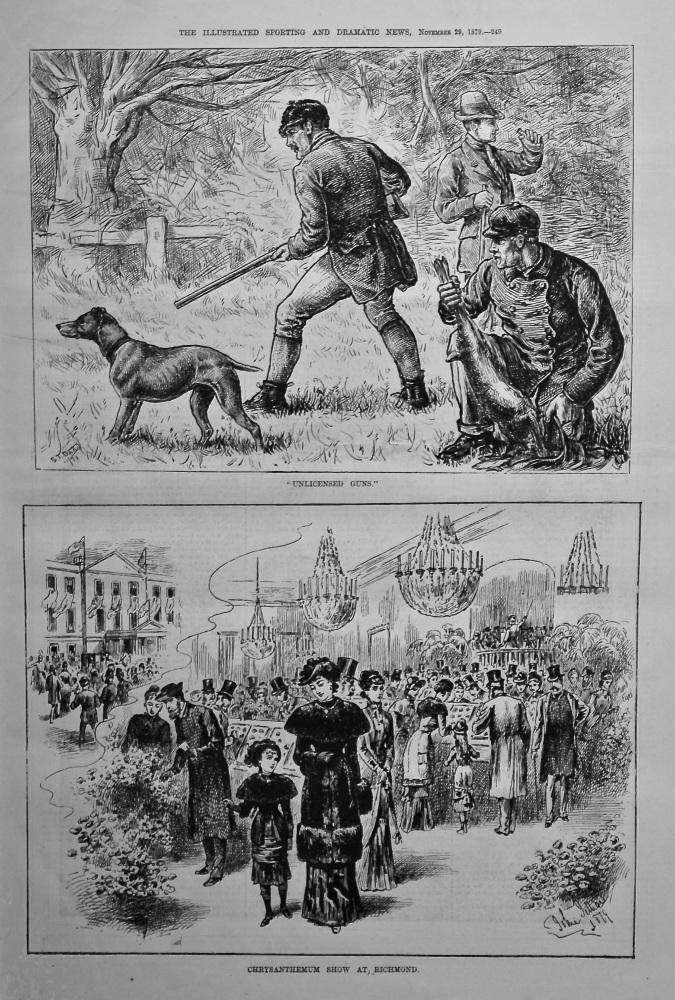 """Unlicensed Guns.""  and Chrysanthemum Show at Richmond. 1879"