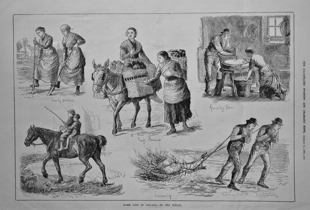Home Life in Ireland.- In The Fields. 1880.