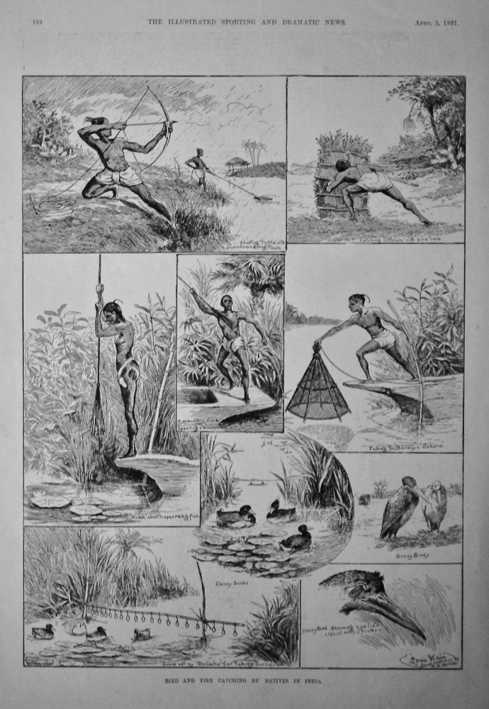 Bird and Fish Catching by Natives in India.  1897.