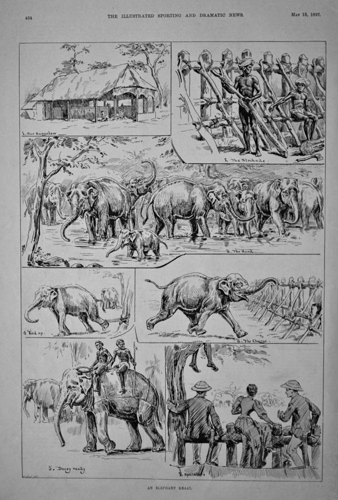 An Elephant Kraal.  1897.