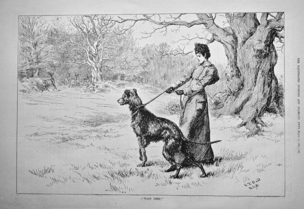 """"""" 'Ware Deer !""""   1881."""
