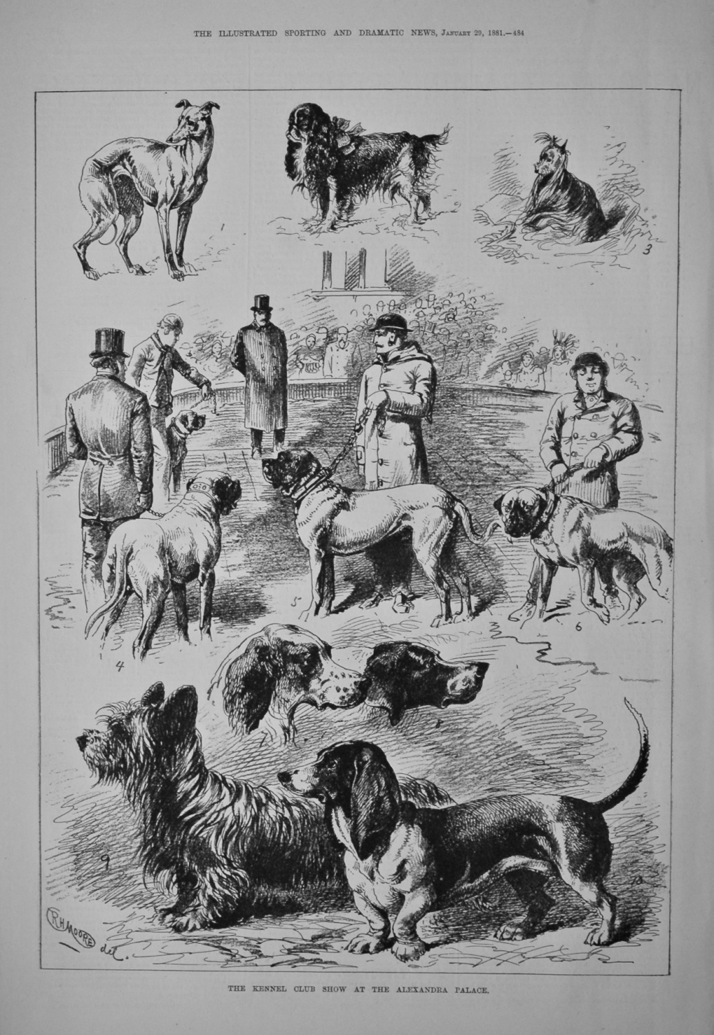 The Kennel Club Show at the Alexandra Palace. 1881