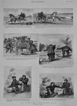 Diana of the Plains : A Duck-Shooting Escapade.  1898.