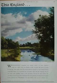 Advert for Worthington & Co