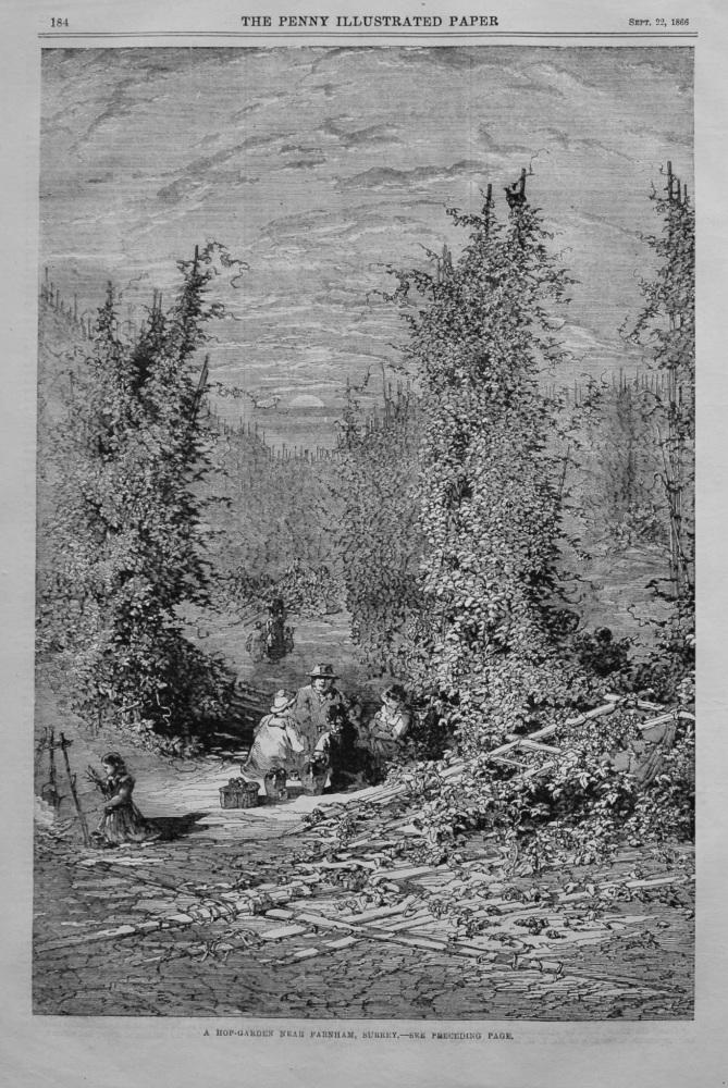 A Hop-Garden near Farnham, Surrey.  1866.