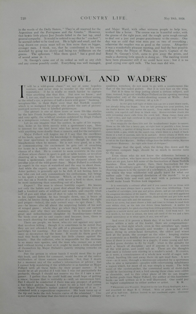 Wildfowl and Waders