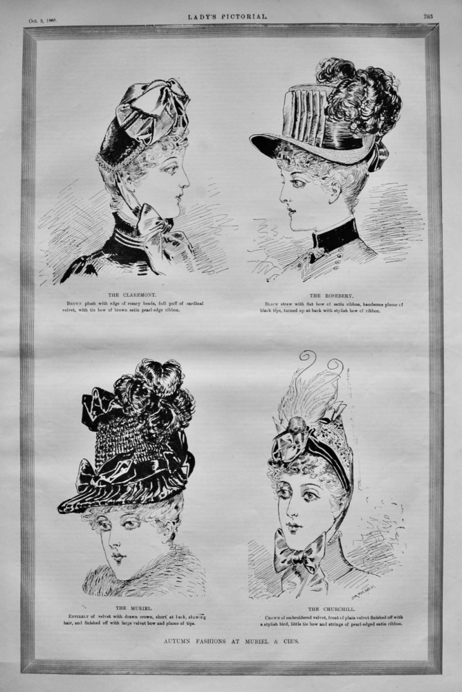 Autumn Fashions at Muriel & Cie's.  1885.