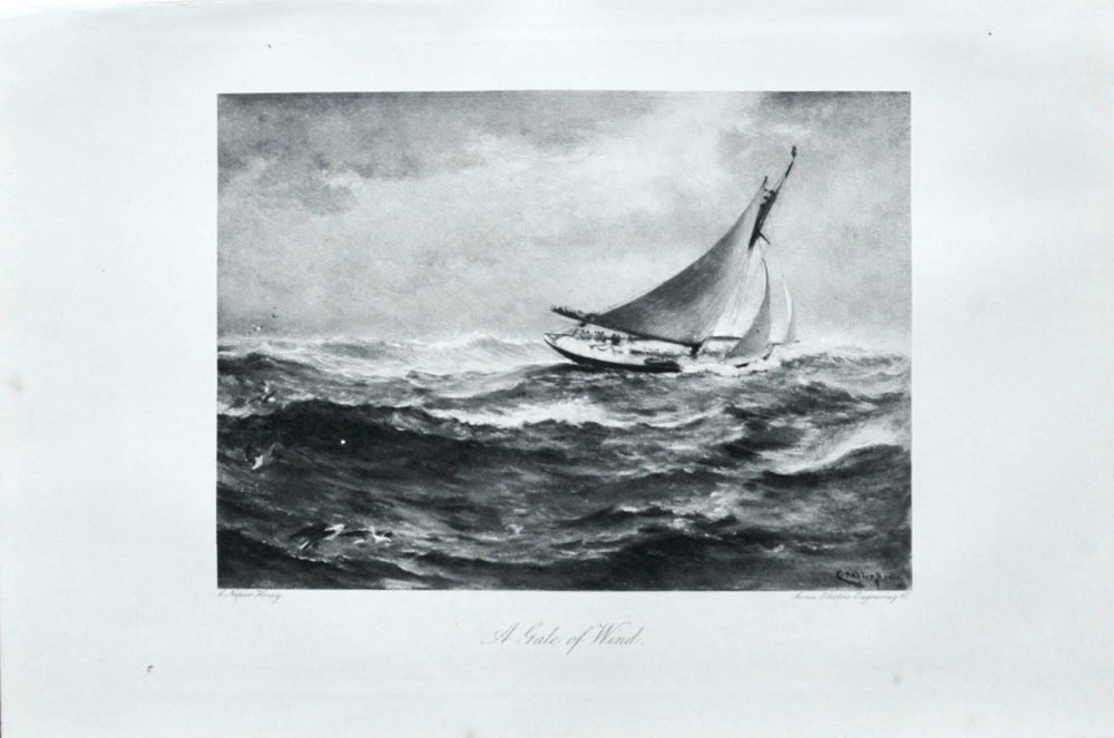 A Gale of Wind. - 1898.