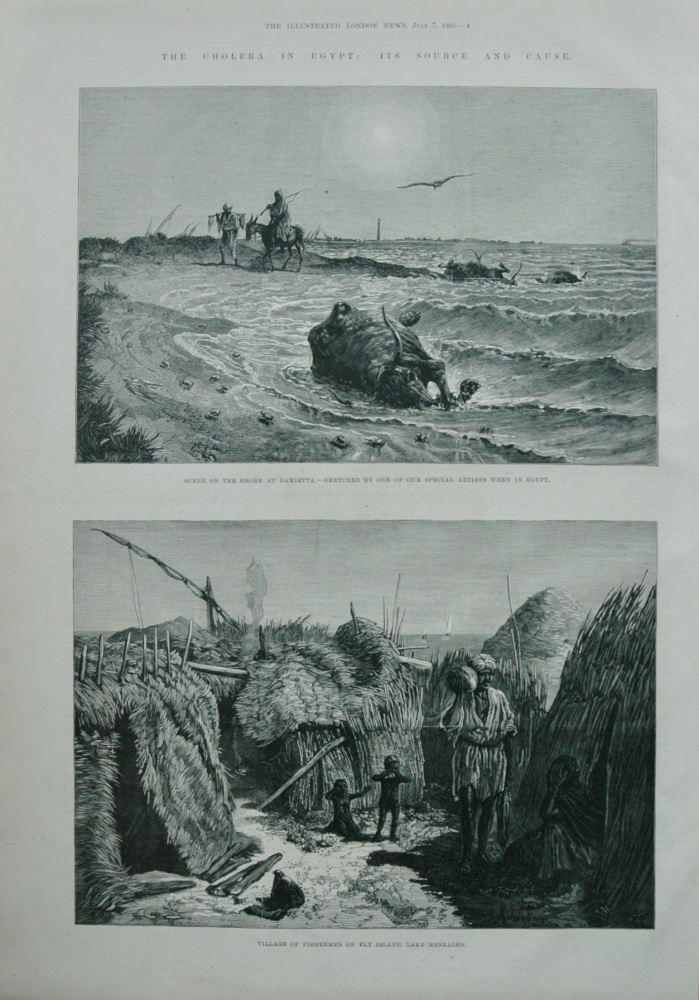 The Cholera in Egypt -  its Source and Cause.  1883.