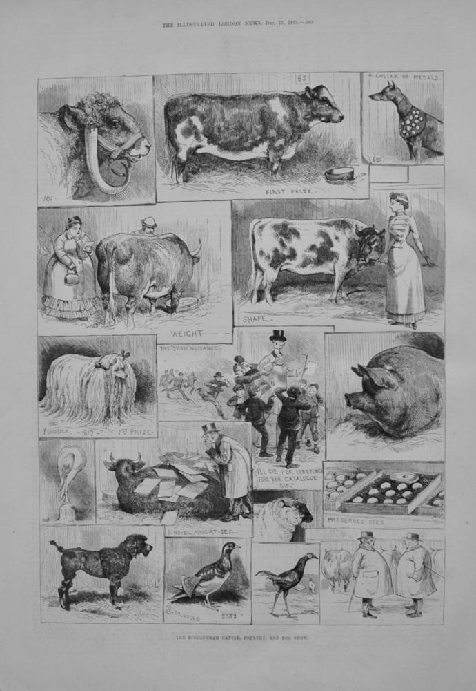 Birmingham Cattle, Poultry Show - 1883