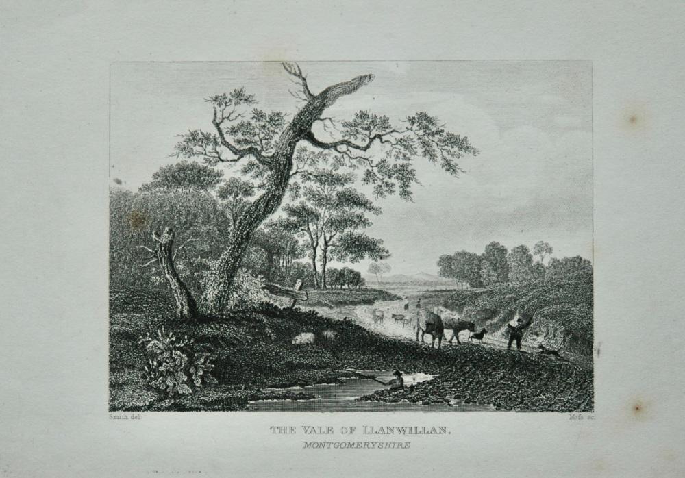 The Vale of Llanwillan. Montgomeryshire.  1845.
