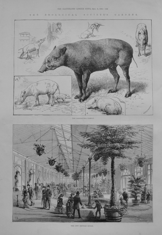 The Zoological Society's Gardens - 1883