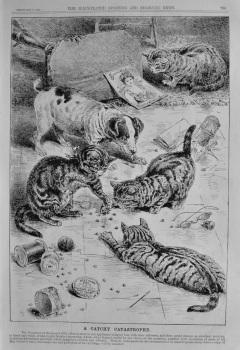 A Catchy Catastrophe.  (Beecham's Pills).  1891.