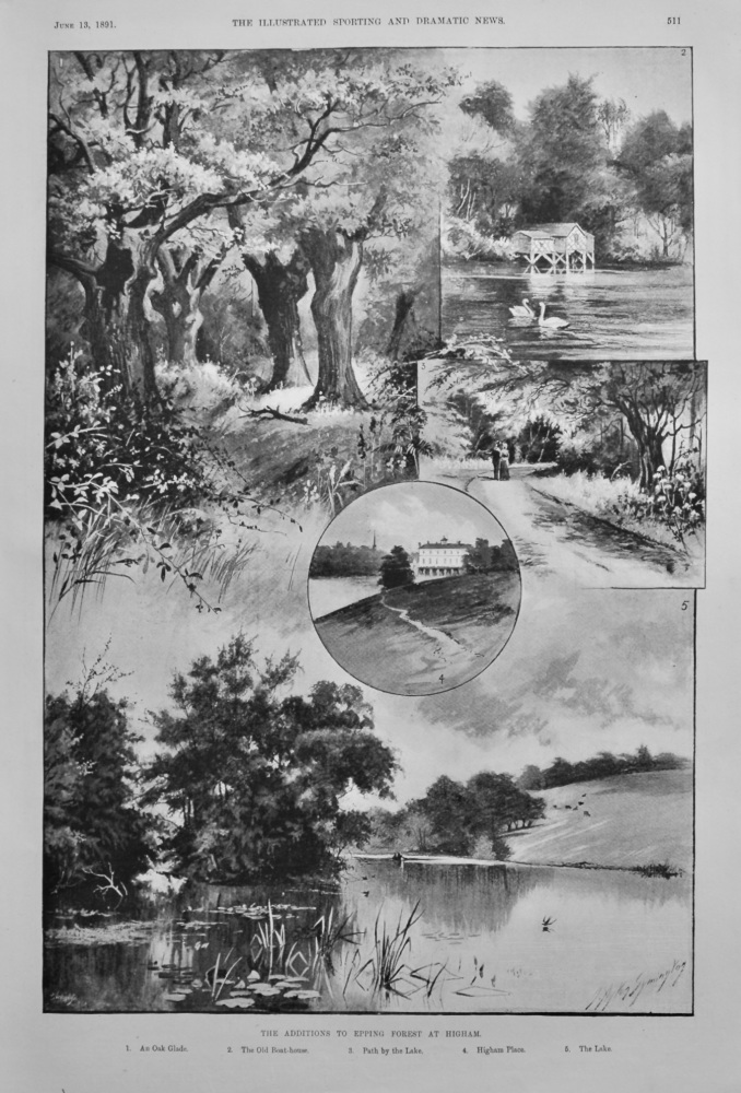 Additions to Epping Forest at Higham.  1891.