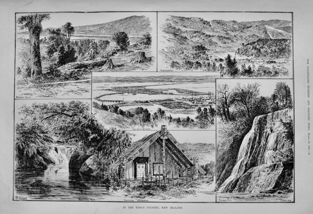 In the King's Country, New Zealand.  1891.