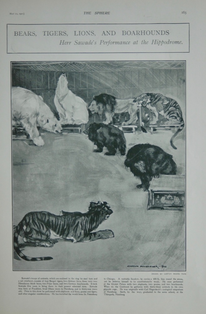 "Bears, Tigers, Lions and Boarhounds at the Hippodrome : Herr Sawade's Performance at the Hippodrome"". 1901."