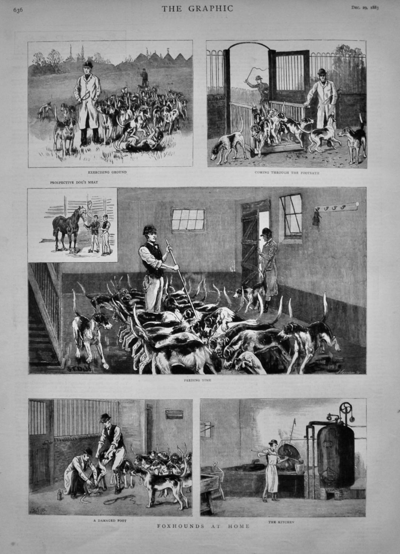 The Graphic Dec 29th 1883
