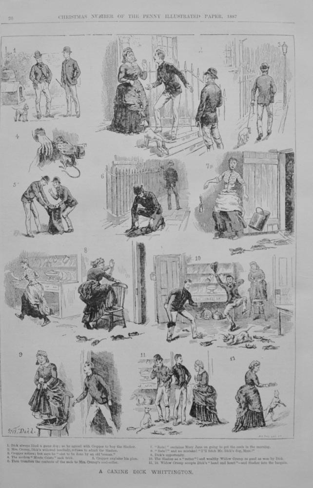 A Canine Dick Whittington - 1887