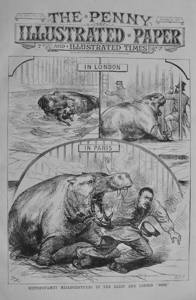 "Hippopotamus Misadventures in the Paris and London ""Zoos"" - 1887"