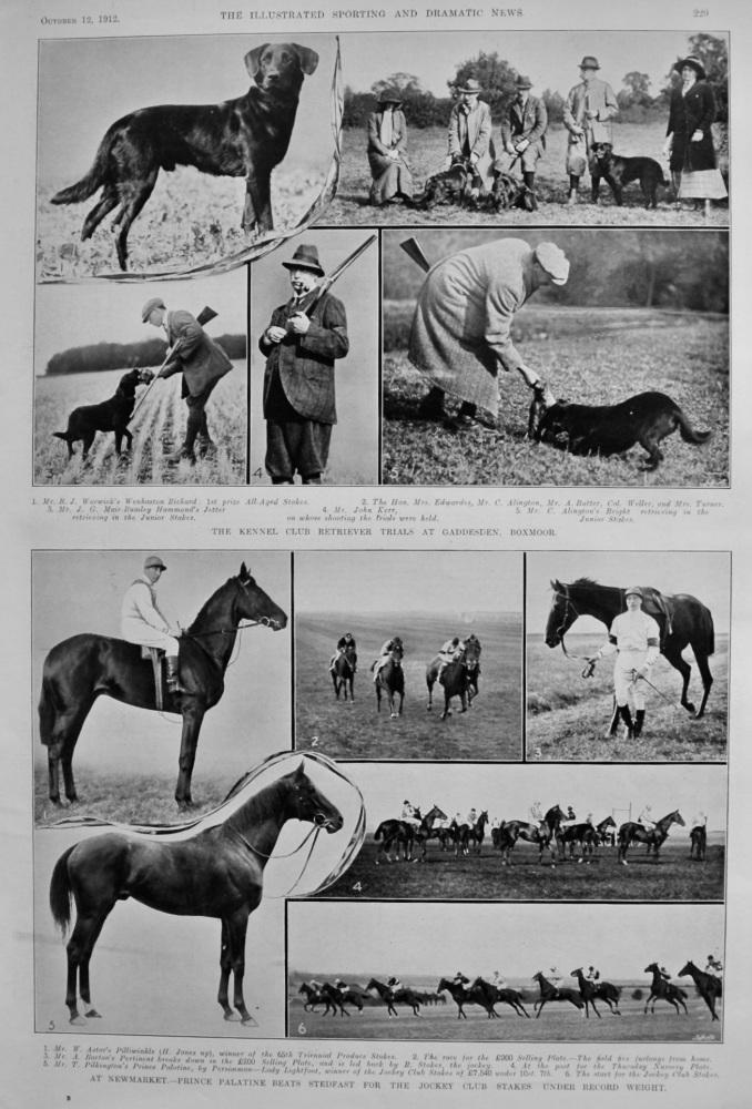 The Kennel Club Retriever Trials at Gaddesden, Boxmoor.  1912.