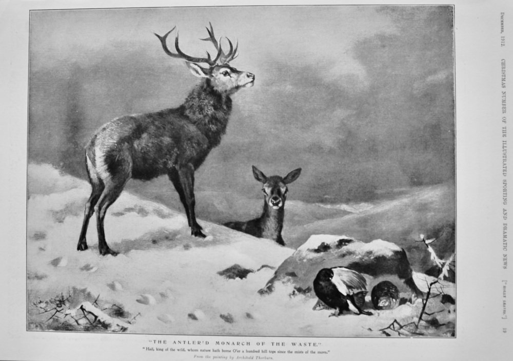 """""""The Antler'd Monarch of the Waste.""""  1912."""
