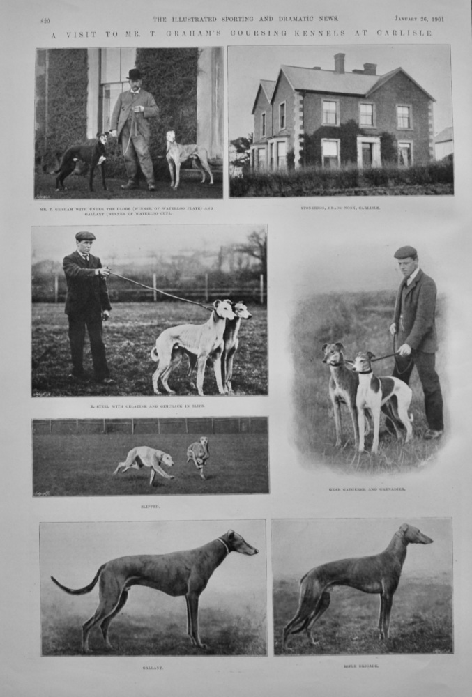A Visit to Mr. T. Graham's Coursing Kennels at Carlisle.  1901.