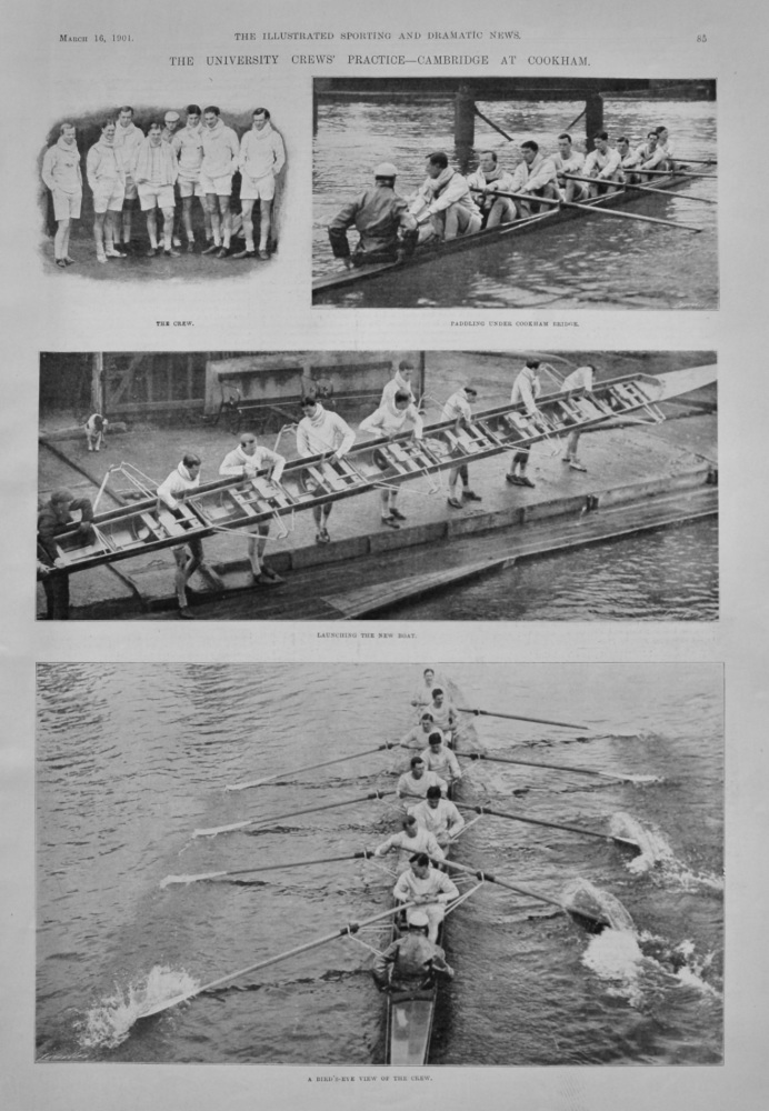 The University Crews' Practice- Cambridge at Cookham. .  1901.