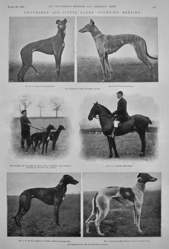 Gravesend and Cliffe Clubs' Coursing Meeting.  1901.
