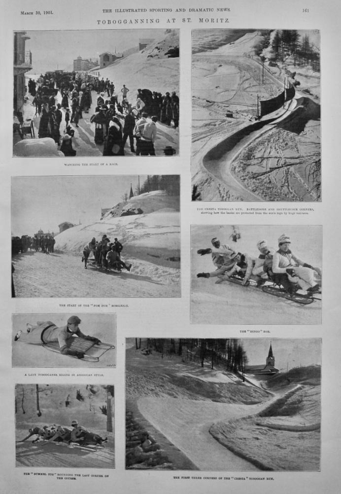Tobogganning at St. Moritz.  1901.