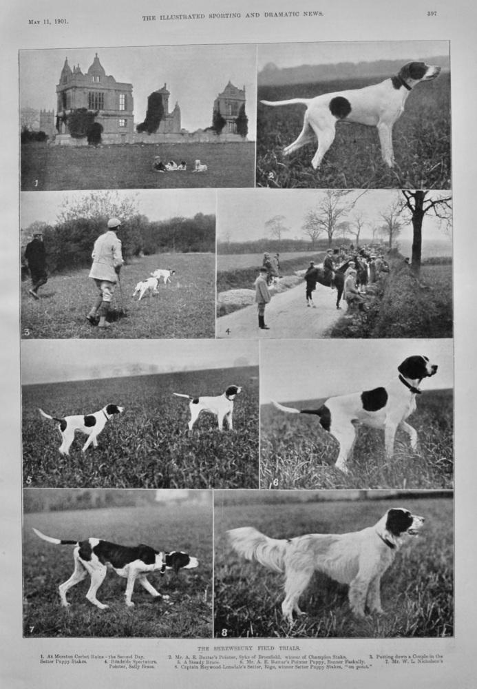 The Shrewsbury Field Trials.  1901.