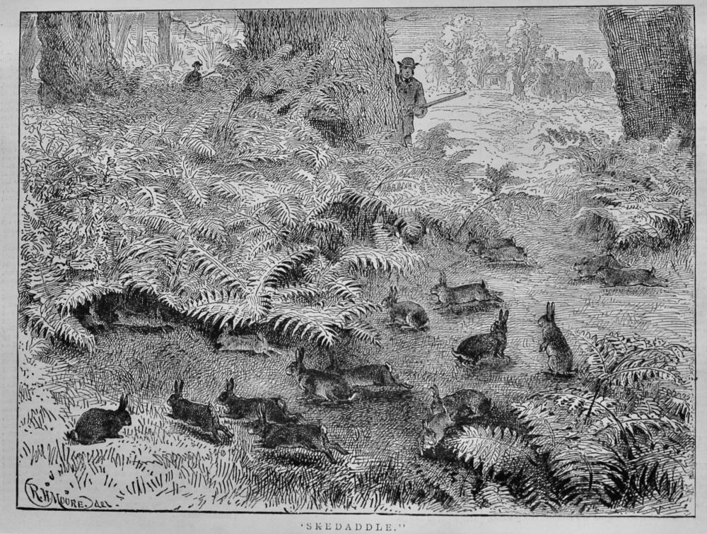 """""""Skedaddle.""""  1878."""