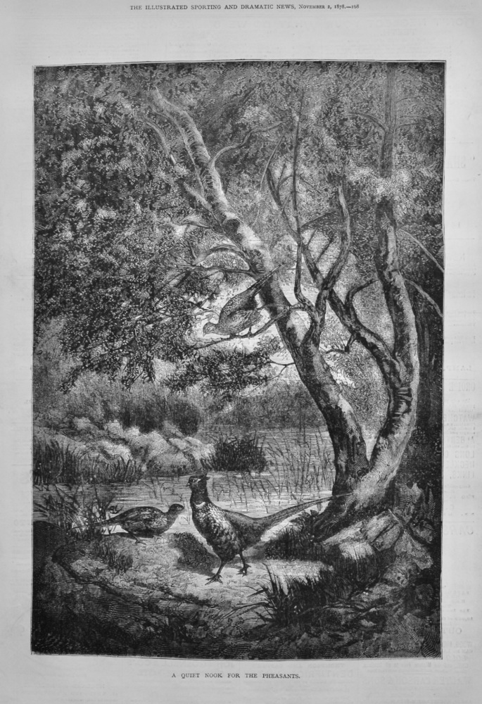 A Quiet Nook for the Pheasants.  1878.
