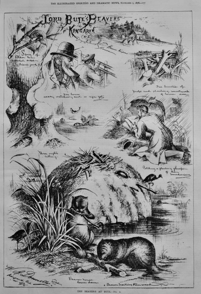 Lord Bute's Beavers Kingarth.  (No.2.)  1878.