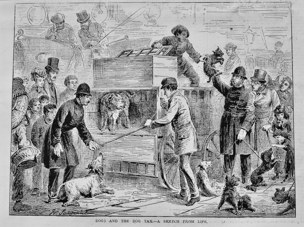 Dogs and the Dog Tax.- A Sketch from Life.  1878.