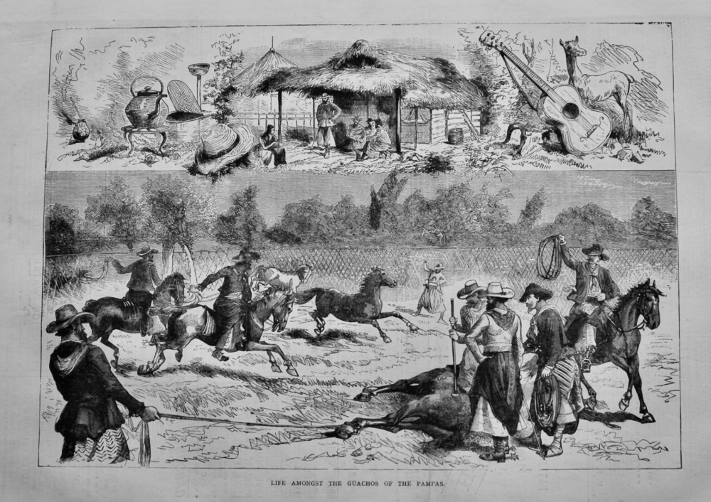 Life Amongst the Guachos of the Pampas.  1878.