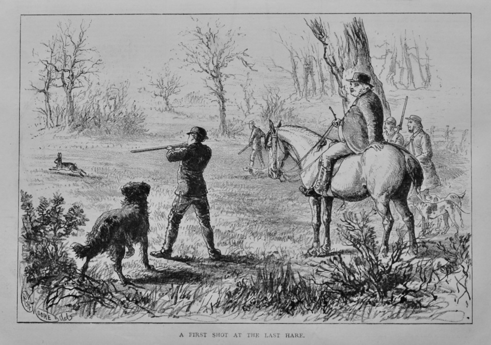 A First Shot at the Last Hare.  1879.