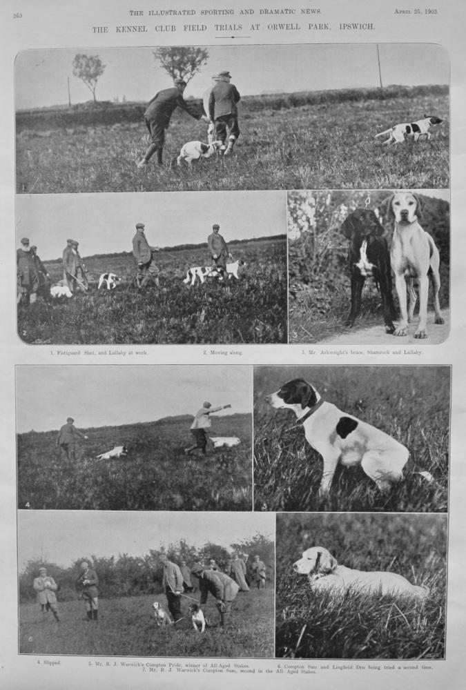 The Kennel Club Field Trials at Orwell Park, Ipswich.  1903.