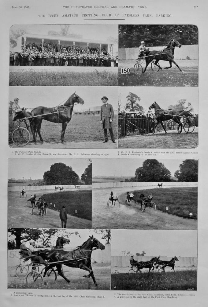 The Essex Amateur Trotting Club at Parsloes Park, Barking.  1903.