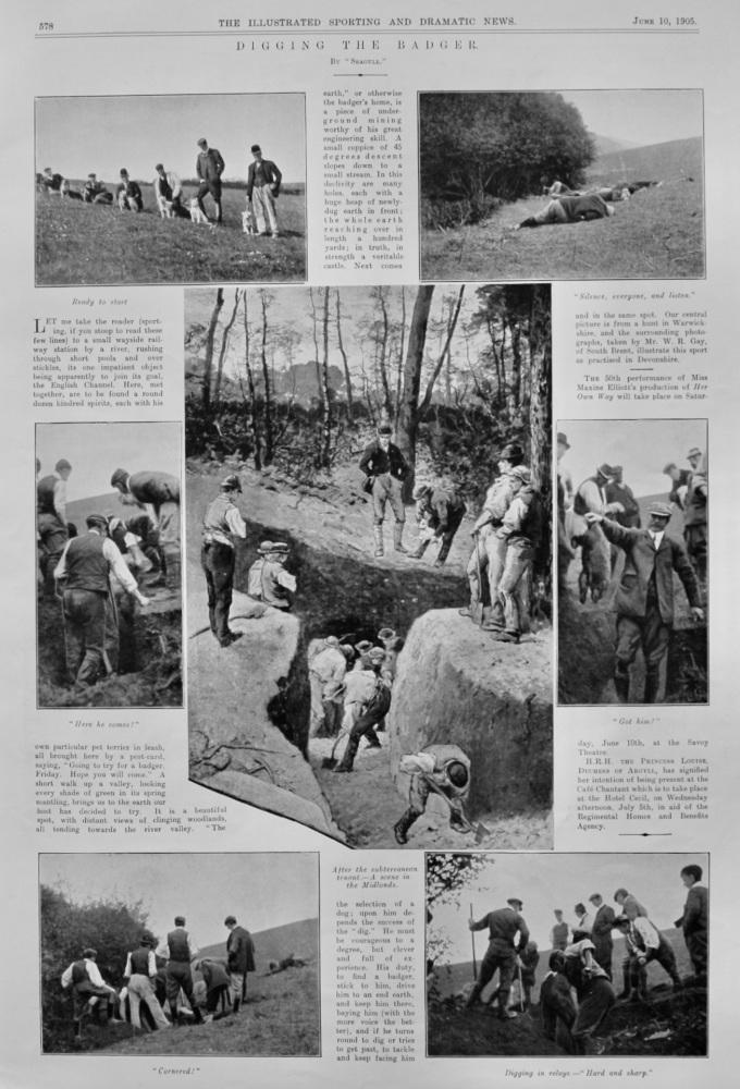 Digging the Badger.  1905.