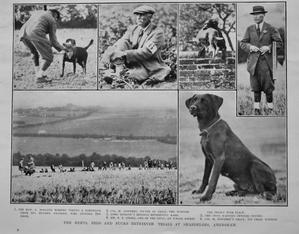 The Herts, Beds and Bucks Retriever Trials at Shardeloes, Amersham. 1921.