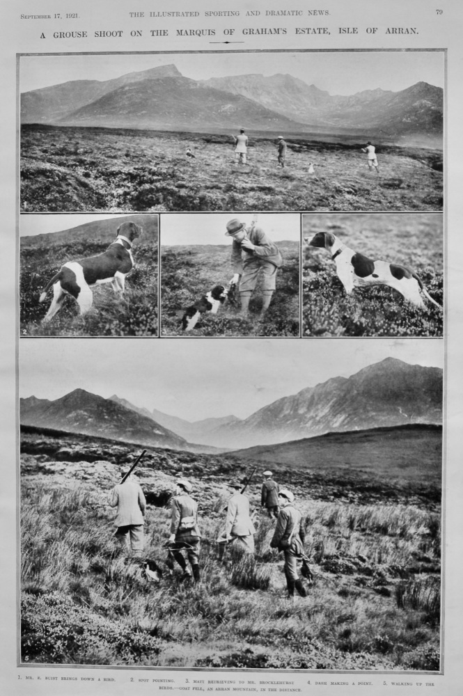 A Grouse Shoot on the Marquis of Graham's Estate, Isle of Arran.  1921.