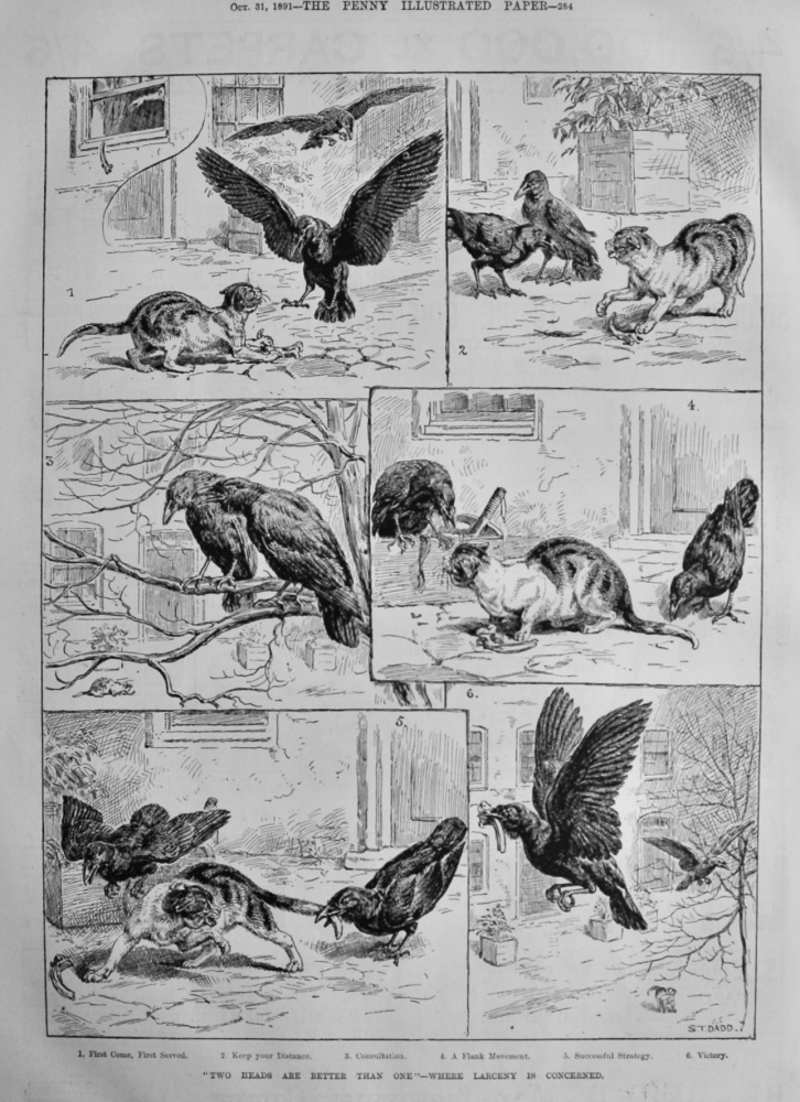 """""""Two Heads are better than One""""- Where Larceny is Concerned.  1891."""