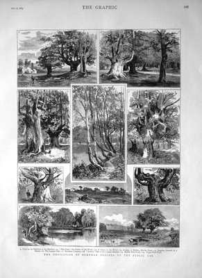 The Dedication of Burnham Beeches to the Public Use. 1883.