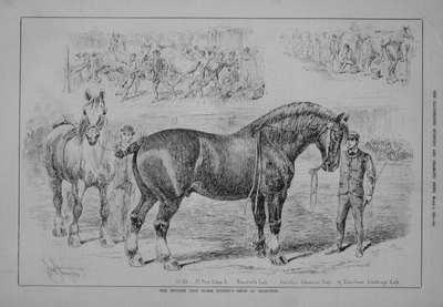 Sporting & Dramatic News Mar 8th 1884.
