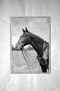 Racing Illustrated Jul 23rd 1895.